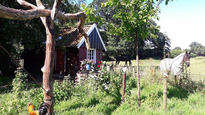 Huisje De Vrolijke Haan,  buitengebied Winterswijk