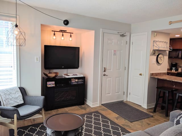Our studio condo has just been updated in July 2019. Freshly painted and new high quality pull out sofa. Large flat screen T.V. with free cable, Blue ray DVD player and selection of movies and games.  FREE UNLIMITED WIFI