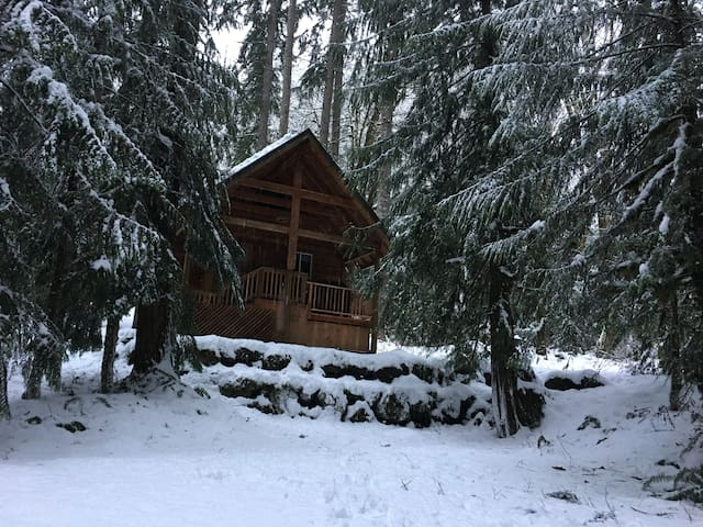 Foss River Cabins - Skykomish - Cottage