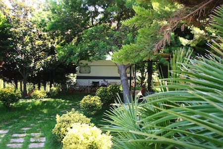 The green garden - Kourouta - Autocaravana