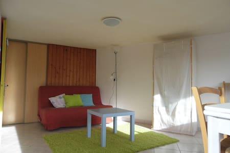 Chambre indépendante 24m2 sur jardin face au Haras - La Roche-sur-Yon - House