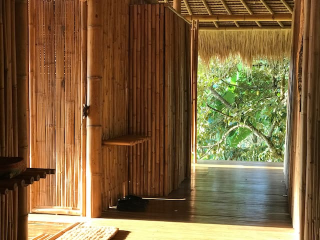 The warmth of the morning sun reaches the veranda hall with a framed view to the durian tree.