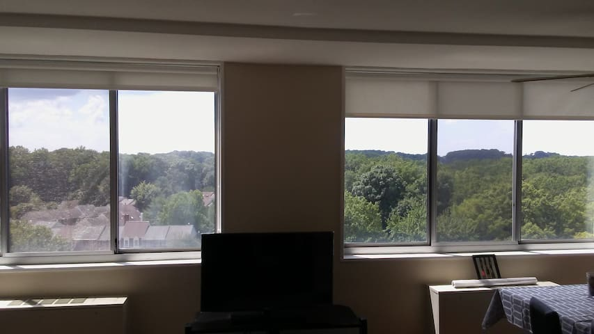 Comfortable, Bright Studio, lovely view - Rockville - Apartment