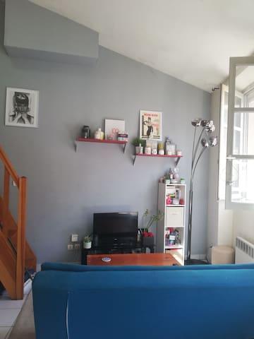 Cozy duplex lumineux - Croix rousse