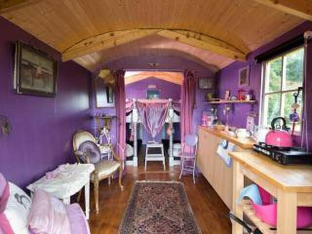'Soothsayer' - beautiful wooden tiny house.