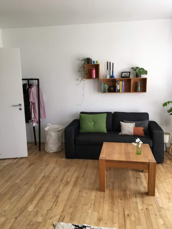 Nice apartment in quiet place 9km from CPH City