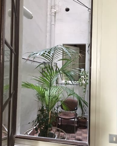 Patio (space without roof) with plants - view from the kitchen