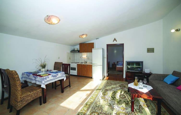 Quiet Spacious Apartment Ivan Kastel Luksic