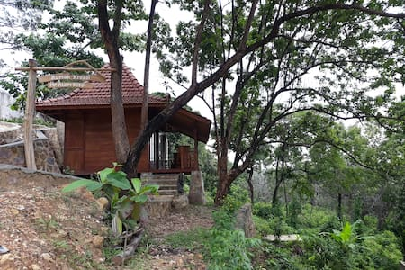 Creative wooden house in tranquility environment