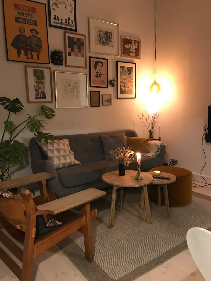 Cosy and stylish apartment close to Nørrebro St.