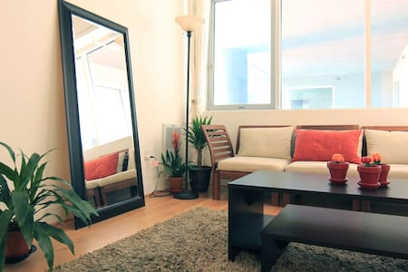 Huge Luxury 1 Bd in central FiDi - Apartment