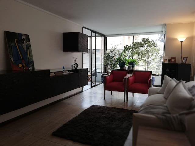 Bright and comfortable room in Santiago-Las Condes