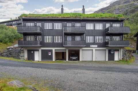 Nice small apartment in Røldal (1-4 people)