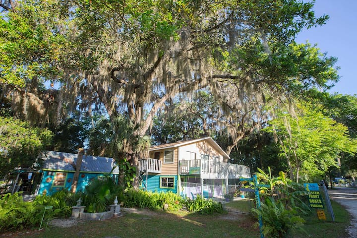Treehouse, Old Homosassa / On River - Homosassa - Domek na drzewie