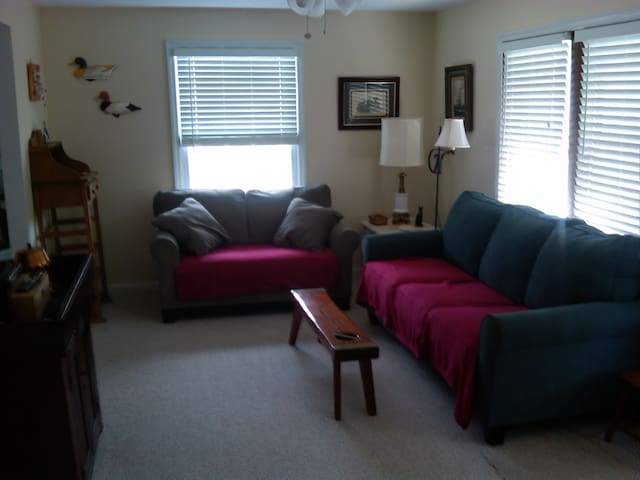 Living room with pullout sofa bed