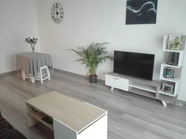 Appartement entier de 50m² hyper centre