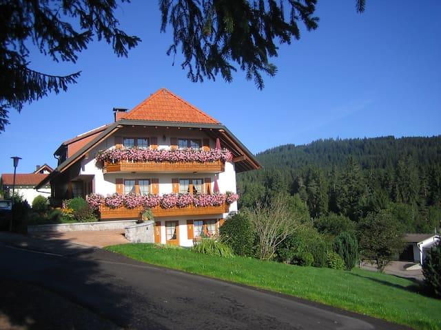 Panoramablick Schluchsee Whg. 1 - Schluchsee