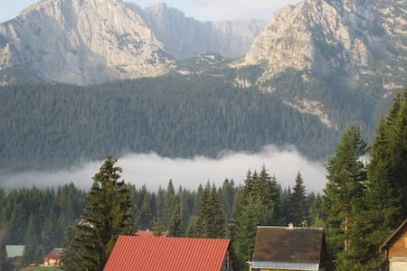 Superb Mountain Retreat - Zabljak - Daire