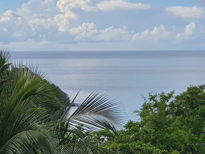 T2 duplex sur les hauteurs de l'Anse à l'Ane