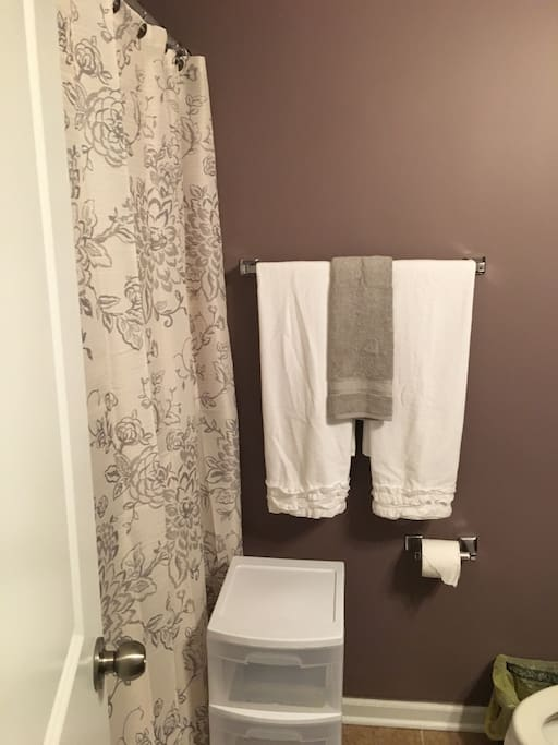 This is the bathroom outside room for your sole use