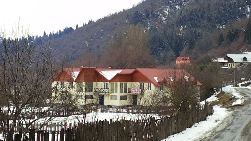 Apartment in Tsagveri; Borjomi