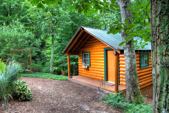 Log Cabin - Tiny Home (256 sqft) - Dahlonega