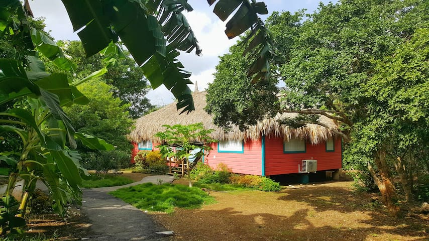 Eco-friendly two bedroom palapa 'Flamingo'
