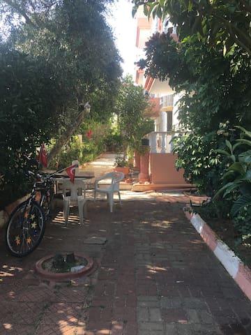 Garden/ Bahce