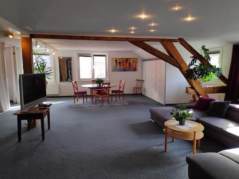 Stor 130 m2 hyggelig lejlighed i hjertet af Triberg