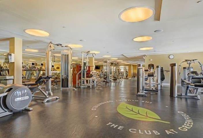 Large room in 3 bd apt w/ balcony! - San Diego