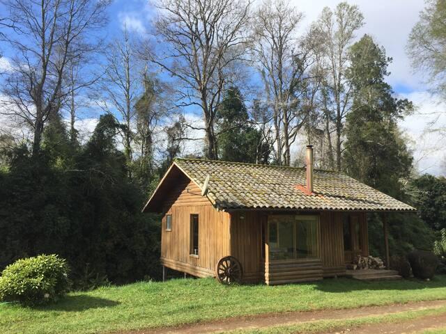 Cabaña tranquila en huerto de arandanos organicos