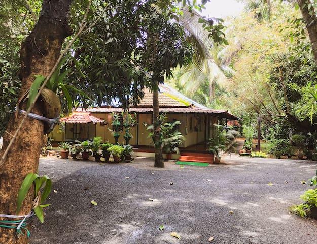 Palm Grove Service Villa - An ancestral homestay