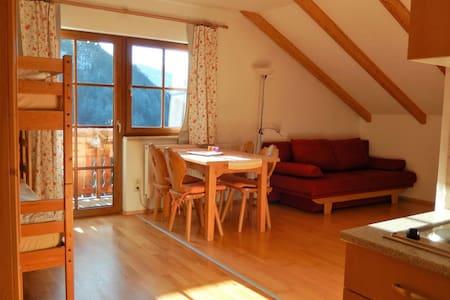 """Biobauernhof Poidlbauer (Göstling an der Ybbs), Mehrbettzimmer """"Hochkarblick"""" mit Balkon und Küchenzeile"""