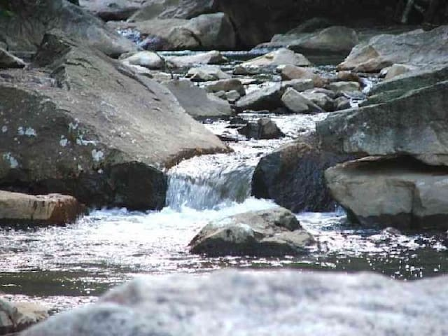 Just a minute's walk away is a wild whitewater stream.