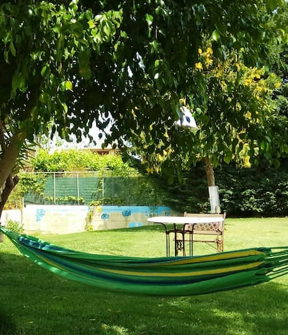 The garden and the hammock