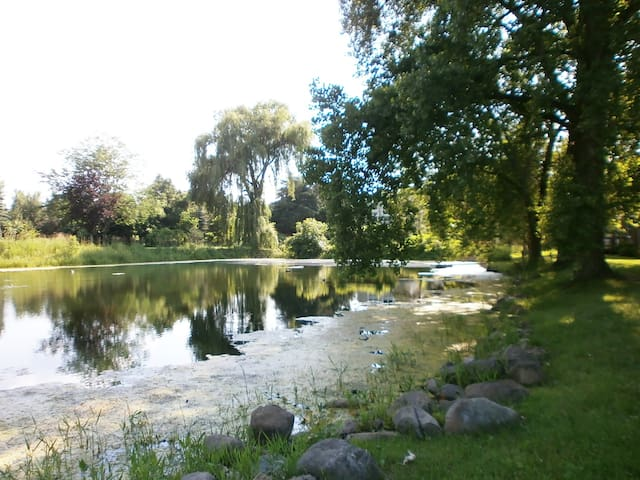 Summer view of pond