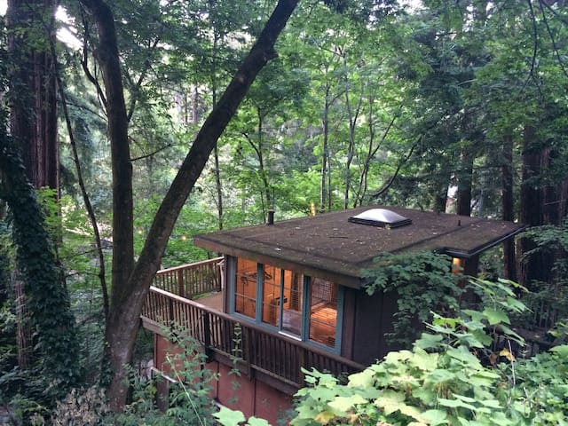 "Redwood ""Tree House"" Studio in Aptos - Aptes - Pis"
