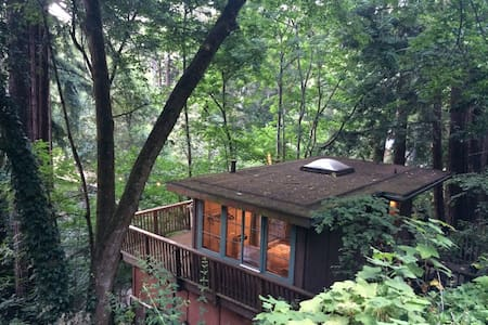 "Redwood ""Tree House"" Studio in Aptos"