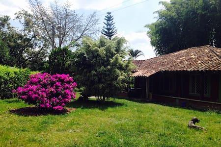 hostal a diez minutos de quimbaya - Quimbaya
