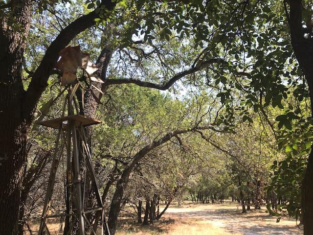 COMING SOON: Convenience Camp w/Luxury Safari Tent