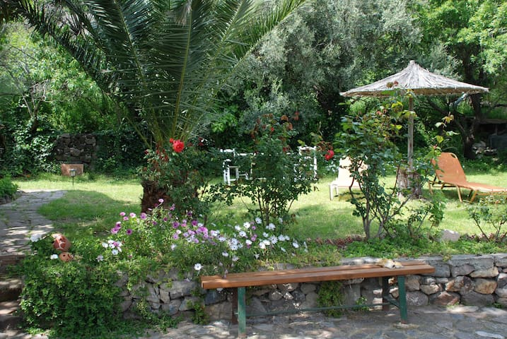 Evas Garden Studio - Mithimna - Dům