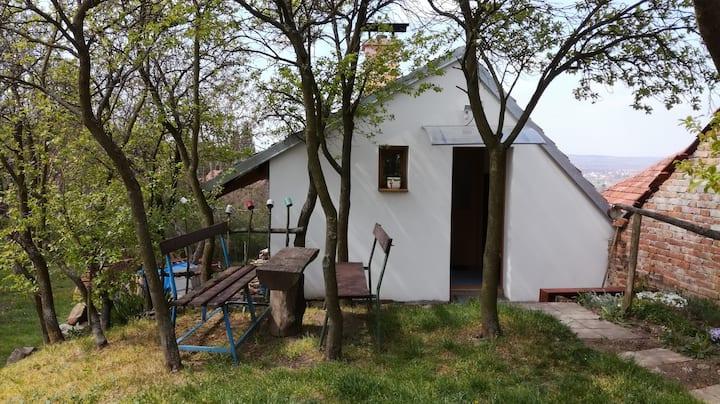 Ubytování pod Pálavou s přilehlou zahradou