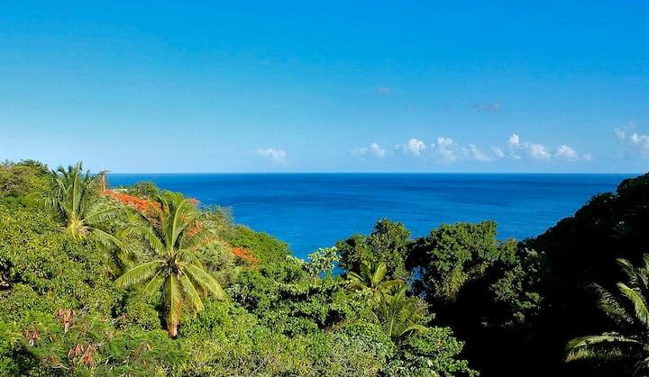 Villa MI-DO au CARBET vue à 180° sur  mer Caraïbe