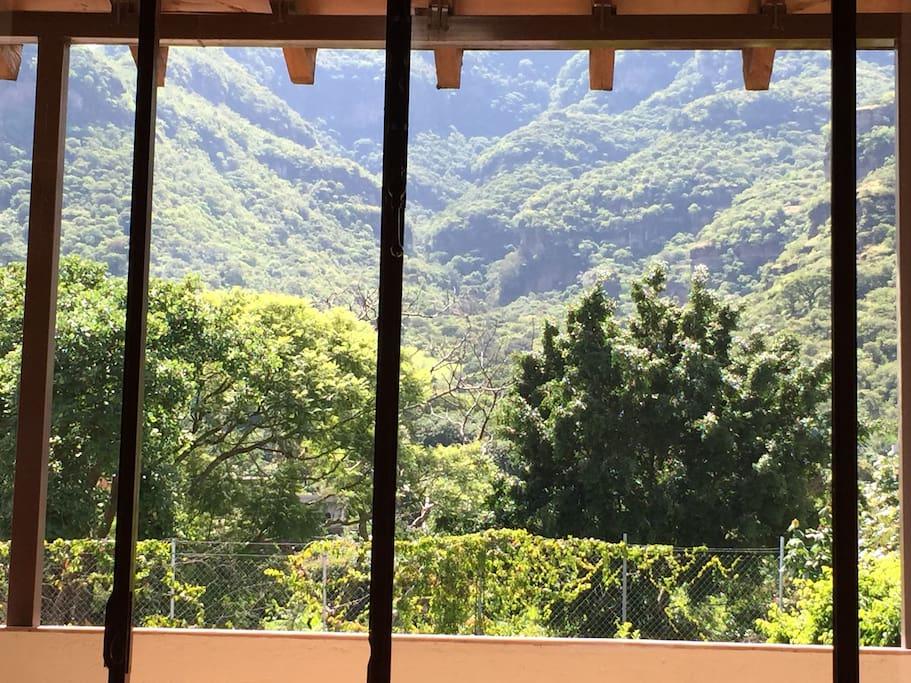Vista desde la habitación 5