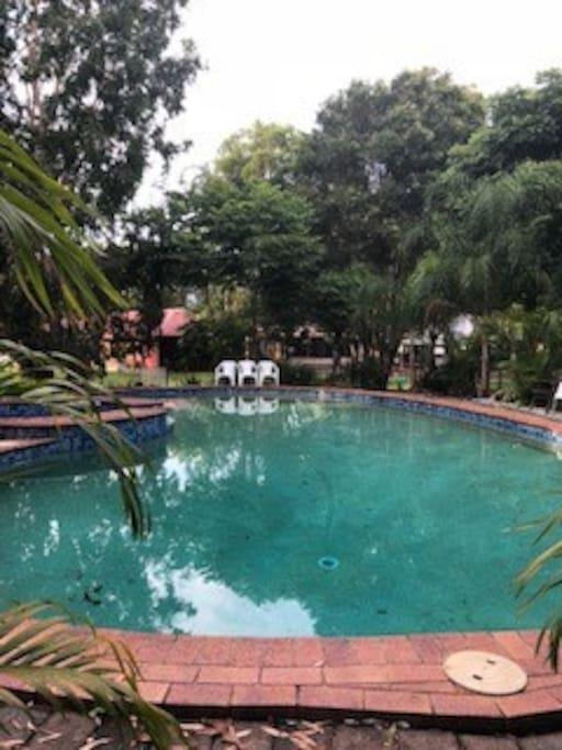 15m pool