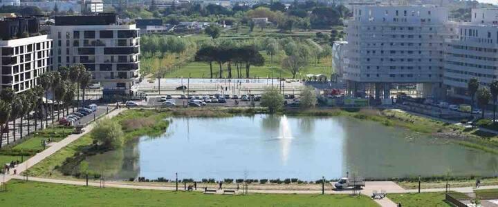 Appart 60m2 au bassin Jacques cœur (port Marianne)