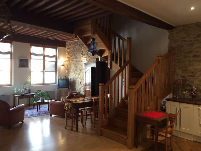 Grand appartement de caractère au coeur de Macon - Mâcon - Apartment