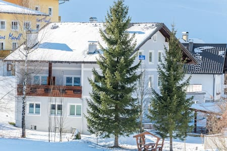 "Apart hotel ""Alpeneer""- 400m from ski lift (ap.8) - Lackenhof"