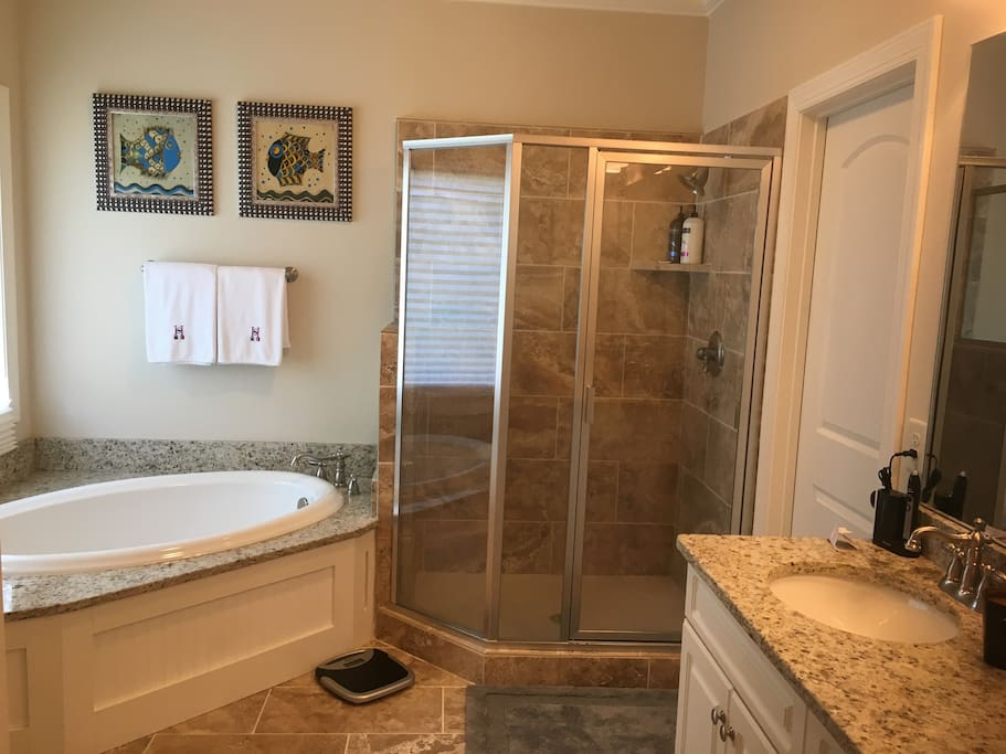 Luxury bath with soaker tub and separate shower and water closet