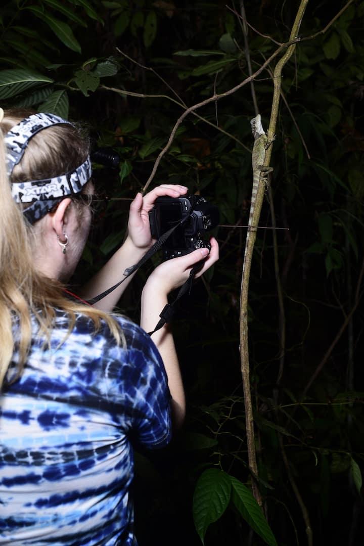 Guest photographing a lizard
